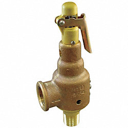 Safety Relief Valve, 3/4 x 1 In, 25 psi