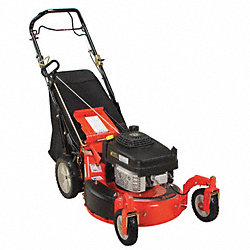 Lawn Mower, 21 In.Wide, 6HP, Variable Speed