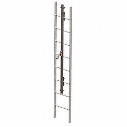 Vertical Access Ladder System Kit, 100ftL