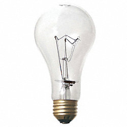 Incandescent Light Bulb, A19, 100W