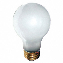 Incandescent Light Bulb, A19, 40W