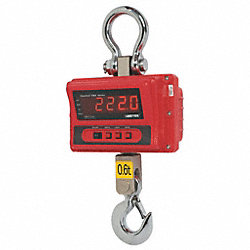 Digital Crane Scale, Aluminum, 24 In. L