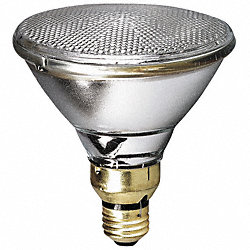 Halogen Floodlight, PAR38, 45W