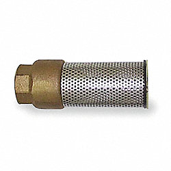 Spring Foot Valve, 1 In, FNPT, Bronze