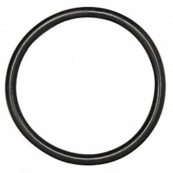 O-Ring Seal, for 1in. Flange, PK10