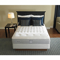 Queen Bed set 60 In.  x 80 In.
