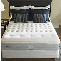 Twin Bed set 38 In.  x 75 In.