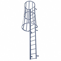 Fixed Ladder w/Safety Cage, 25 ft. 3 In H