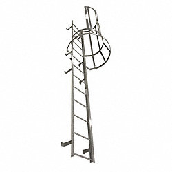 Fixed Ladder w/Safety Cage, 14 ft. 3 In H