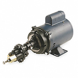 Pump, Rotary Gear, 1 PH