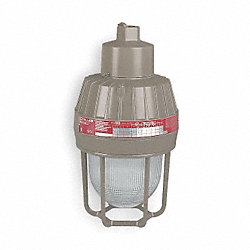 Metal Halide Light Fixture, With 2PDC8