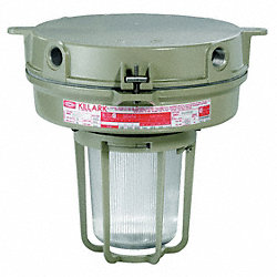 HPS Light Fixture, With 2PDE4 And 2PDG7