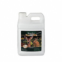 Deer/Rabbit Repplent, 2.5 Gal., Concetrate